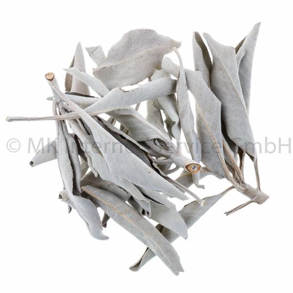 White Sage - Weißer Salbei (USA) 50 g