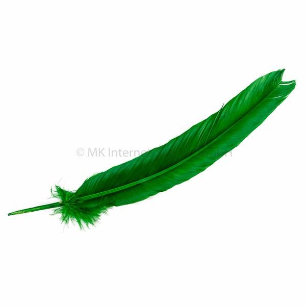 Feder Turkey, grün